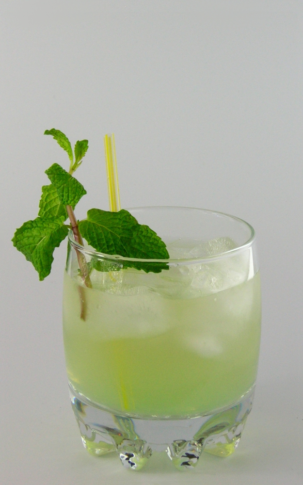 vodka cocktail recipes with pictures pdf